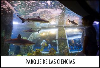 Excursión al Parque de las Ciencias de Granada